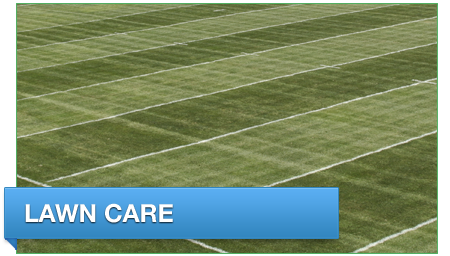 home_box_lawn_care
